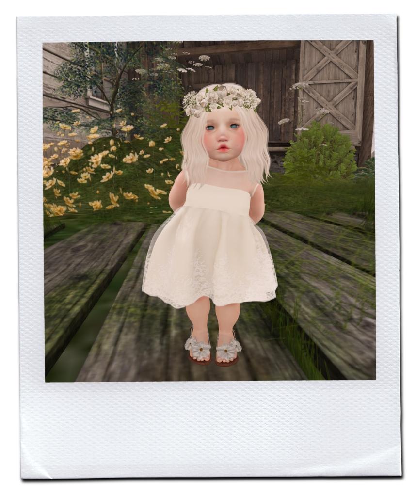 FLOWER GIRL P
